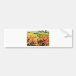 VINEYARDS.JPG BUMPER STICKER