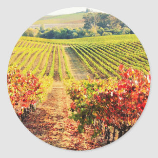 VINEYARDS.JPG CLASSIC ROUND STICKER