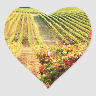 VINEYARDS.JPG HEART STICKER