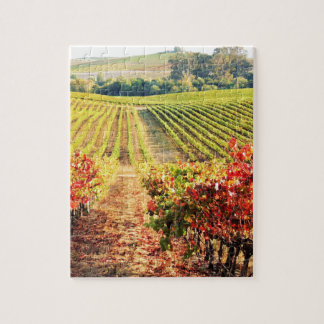 VINEYARDS.JPG JIGSAW PUZZLE