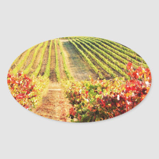 VINEYARDS.JPG OVAL STICKER