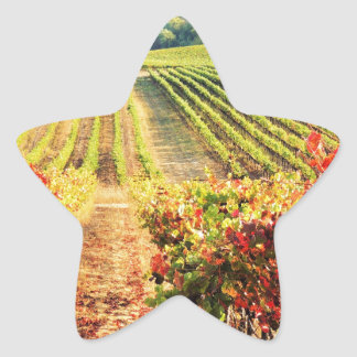 VINEYARDS.JPG STAR STICKER