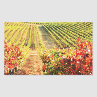 VINEYARDS.JPG STICKER