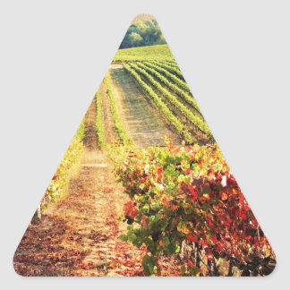 VINEYARDS.JPG TRIANGLE STICKER