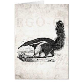 Vintage 1800s Aardvark Retro Ant Eater Template