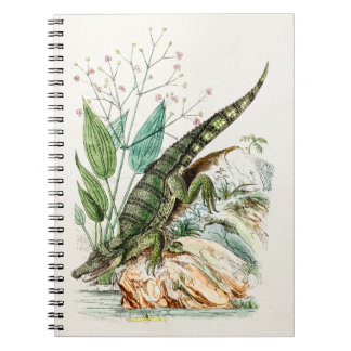 Vintage 1800s Alligator Crocodile Illustration Note Book