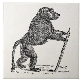 Vintage 1800s Baboon Walking Stick Monkey Baboons Tile