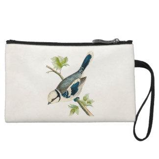 Vintage 1800s Blue Bird Songbird Birds Drawing Wristlet