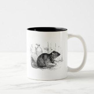 Vintage 1800s Brown Barn Rat Rats Illustration Two-Tone Coffee Mug