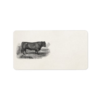 Vintage 1800s Bull Illustration Retro Cow Bulls Label