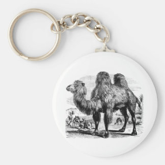 Vintage 1800s Camel -  Egyptian Camels Template Keychain