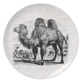 Vintage 1800s Camel -  Egyptian Camels Template Plate