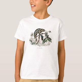 Vintage 1800s Chameleon Lizard Retro Chameleons T-Shirt