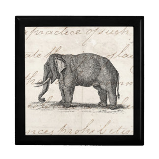 Vintage 1800s Elephant Illustration - Elephants Keepsake Box