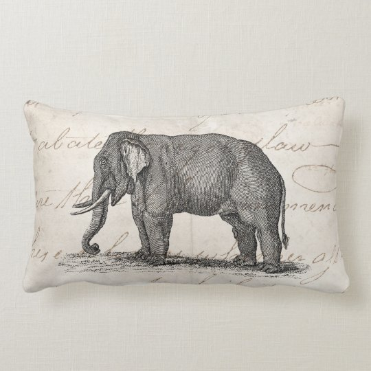 Vintage 1800s Elephant Illustration - Elephants Lumbar Pillow