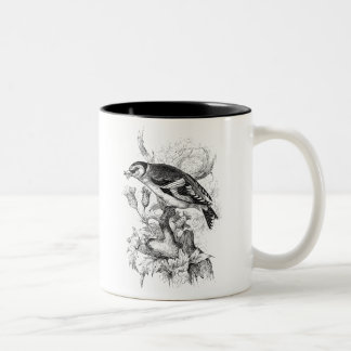 Vintage 1800s Goldfinch Bird Illustration - Birds Two-Tone Coffee Mug