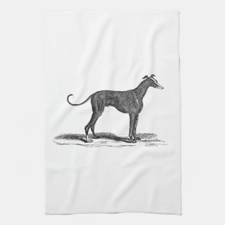 Vintage 1800s Greyhound Dog Illustration - Dogs Kitchen Towel