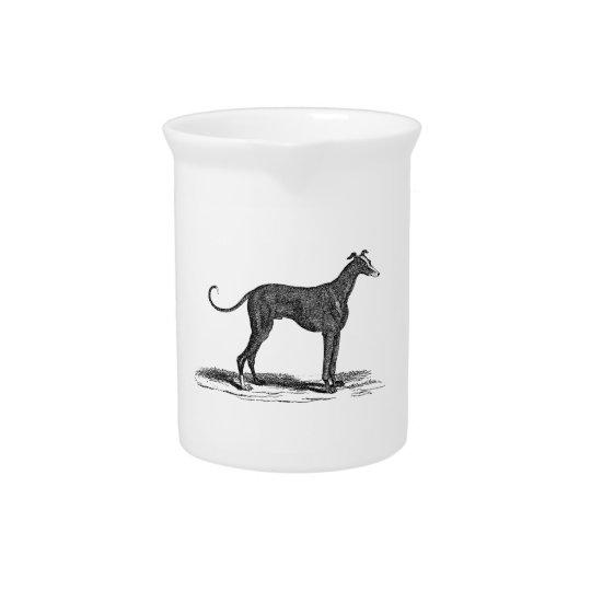 Vintage 1800s Greyhound Dog Illustration - Dogs Pitcher