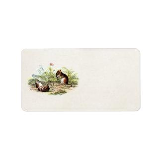 Vintage 1800s Harvest Mouse Illustration Mice Label