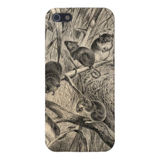 Vintage 1800s Harvest Mouse Retro Mice Template iPhone 5/5S Case