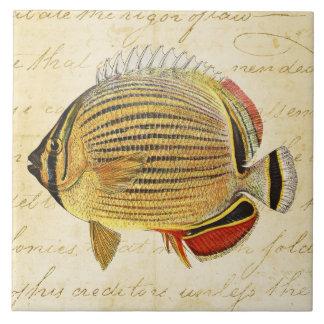 Vintage 1800s Hawaiian Butterfly Fish Illustration Tile