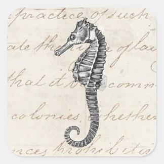 Vintage 1800s Hawaiian Sea Horse Illustration Square Sticker