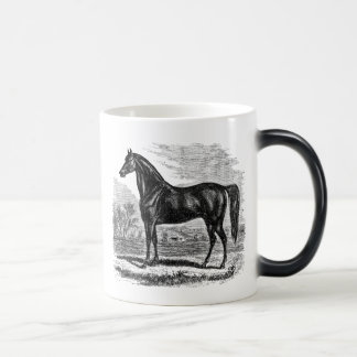 Vintage 1800s Horse - Morgan Equestrian Template Magic Mug