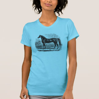 Vintage 1800s Horse - Morgan Equestrian Template T-Shirt