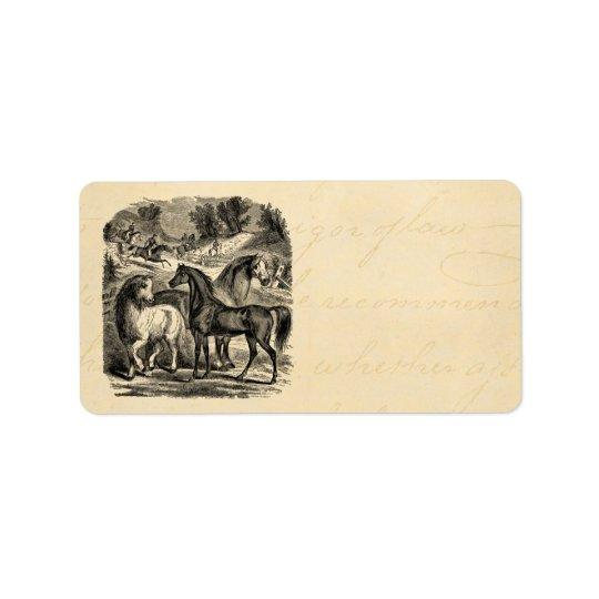 Vintage 1800s Horses Arabian Cart Cossack Horse Label