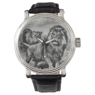 Vintage 1800s Lion Lionesse Big Cat Illustration Watch