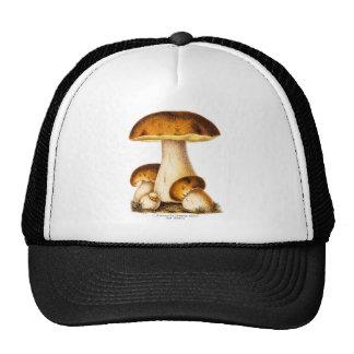 Vintage 1800s Mushroom Edible Mushrooms Template Trucker Hat