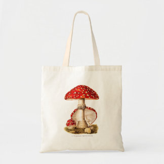Vintage 1800s Mushroom Red Mushrooms Template