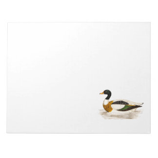 Vintage 1800s Old Drake Duck Illustration - Ducks Notepad