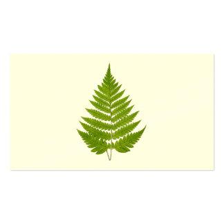 Vintage 1800s Olive Green Fern Leaf Template Business Card