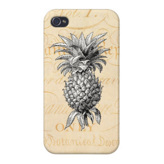 Vintage 1800s Pineapple Illustration Botany Cover For iPhone 4