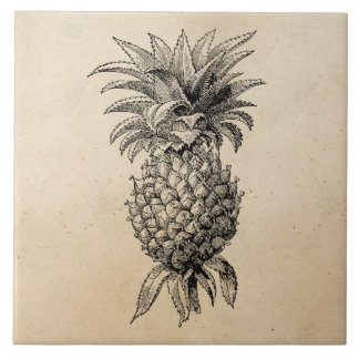 Vintage 1800s Pineapple Illustration Pineapples Tile