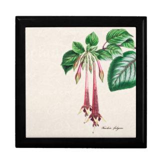 Vintage 1800s Pink Fuchsia Flower Fuschia Floral Gift Box