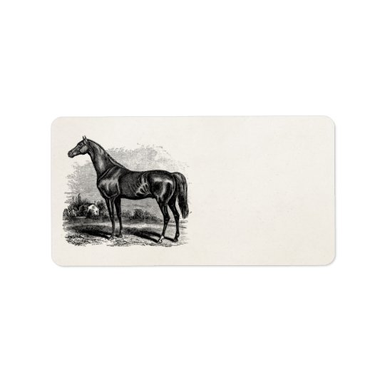 Vintage 1800s Race Horse Retro Thoroughbred Horses