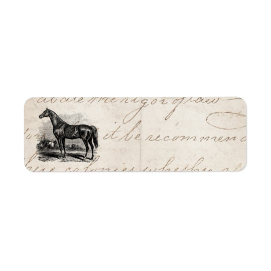 Vintage 1800s Race Horse Retro Thoroughbred Horses Return Address Label