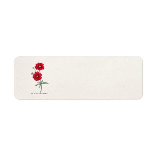 Vintage 1800s Red Flower Potentilla Cinquefoil Return Address Label