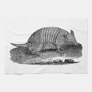 Vintage 1800s Retro Armadillo Antique Armadillos Kitchen Towel