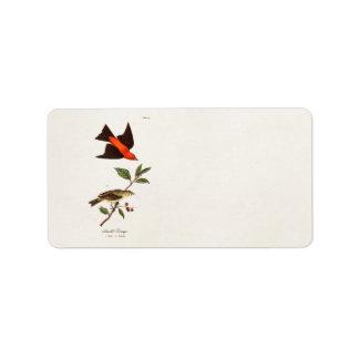 Vintage 1800s Scarlet Tanager Bird Songbird Birds Label