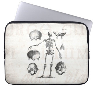 Vintage 1800s Skeleton Antique Anatomy Skeletons Laptop Sleeve