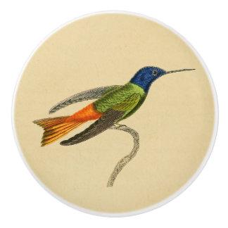 Vintage 1830 Hummingbird Drawer Knob
