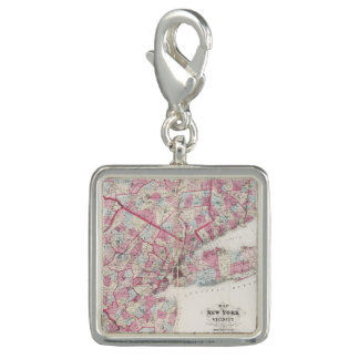Vintage 1868 Map of New York Photo Charm