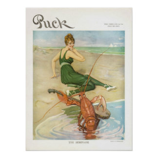 Vintage 1914 Puck Magazine Cover Poster, Beach Poster