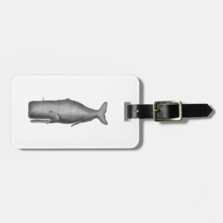 Vintage 19th Century Whale Drawing Luggage Tag
