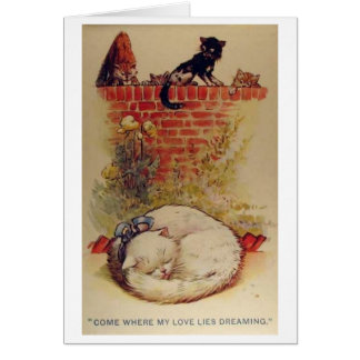 Vintage - A Cat's Dreams, Card