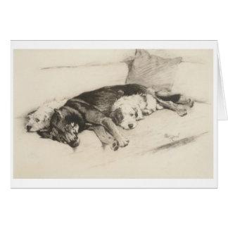 Vintage - A Cozy Trio of Dogs, Card