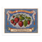 Vintage Ad for Fresh Strawberries circa 1868 Postcard
